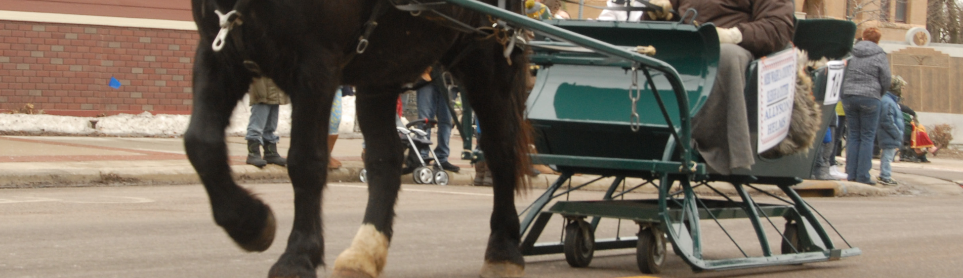 Winter | Events | Festival | Contests | Waseca,MN | Waseca Sleigh And  Cutter Festival